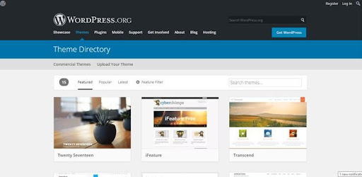 Fundamental Tips to Choose WordPress Themes